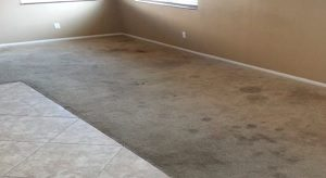 Tough Carpet Cleaning